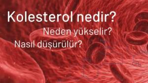 Kolesterol nedir? Kolesterol Belirtileri Nelerdir?